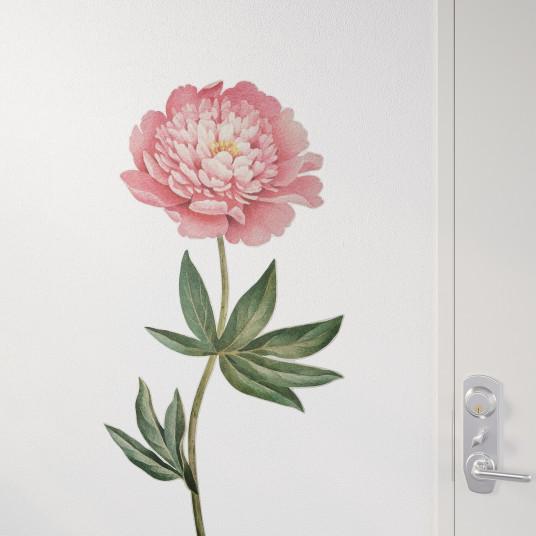 IKEA KINNARED Abtibild, Bujor roz, 116 cm