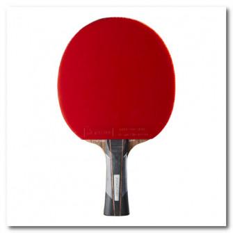 Paleta Tenis de Masa la club TTR900 Spin