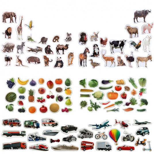Animale animal